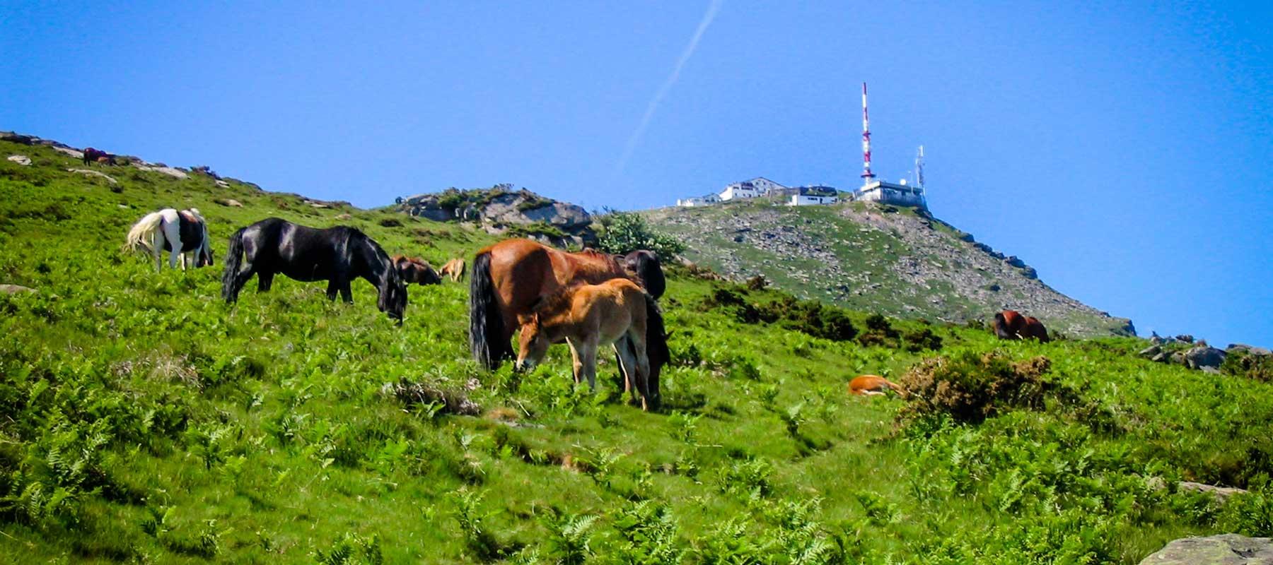 location de vacances Pays Basque