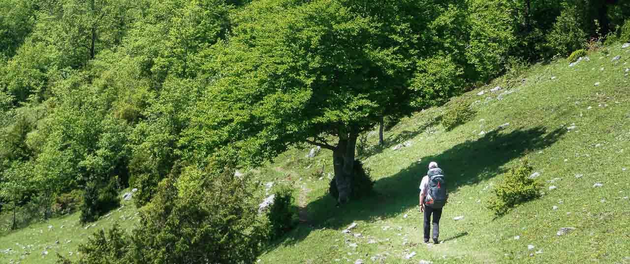 Pays basque randonnées